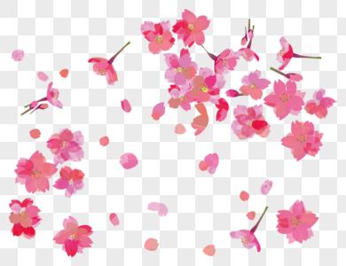治愈小清新手绘粉色玫瑰花瓣 photo
