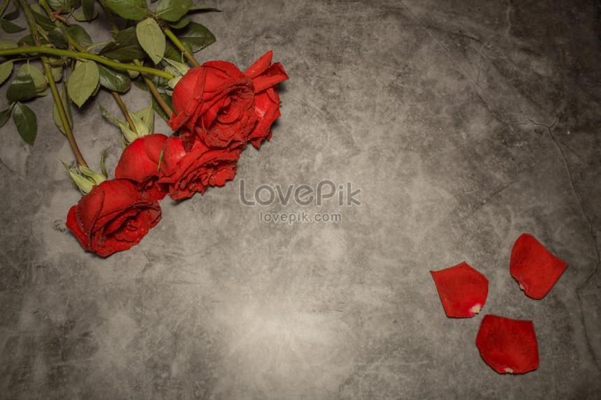Lovepik صورة Psd 605817288 Id صورة فوتوغرافية بحث صور ردة حمراء