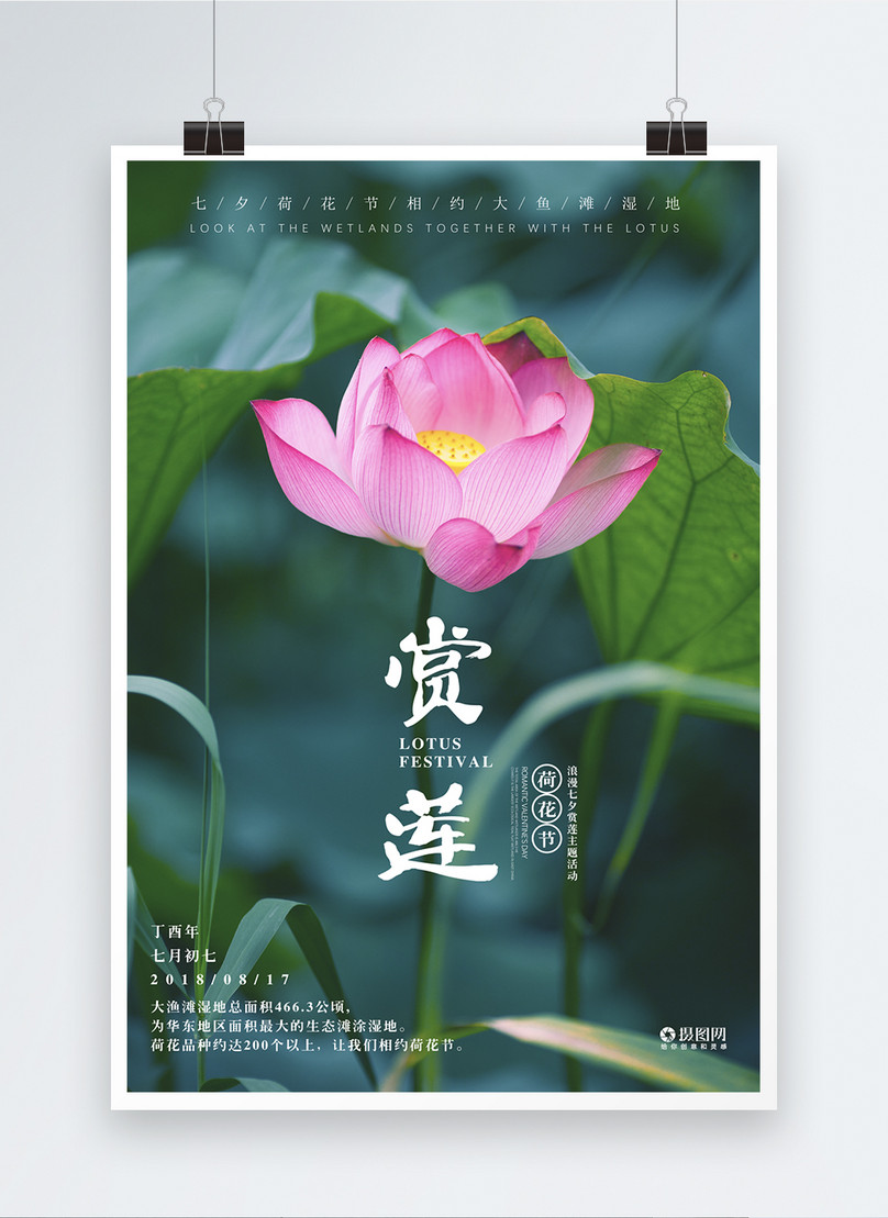 cartaz de flor de lótus