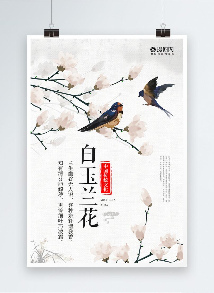 cartel de flor de magnolia blanca en primavera
