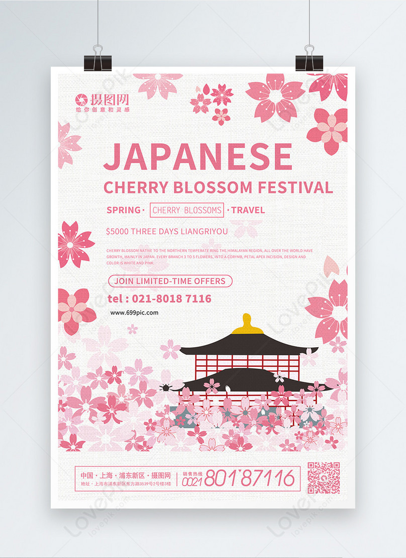 pink aesthetic japanese cherry blossom festival publicity englis