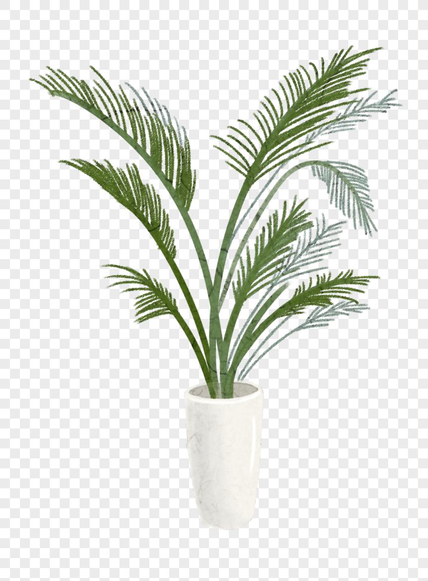 Plante Haute En Pot photo de plante en pot_numéro de l'image400193397_format d