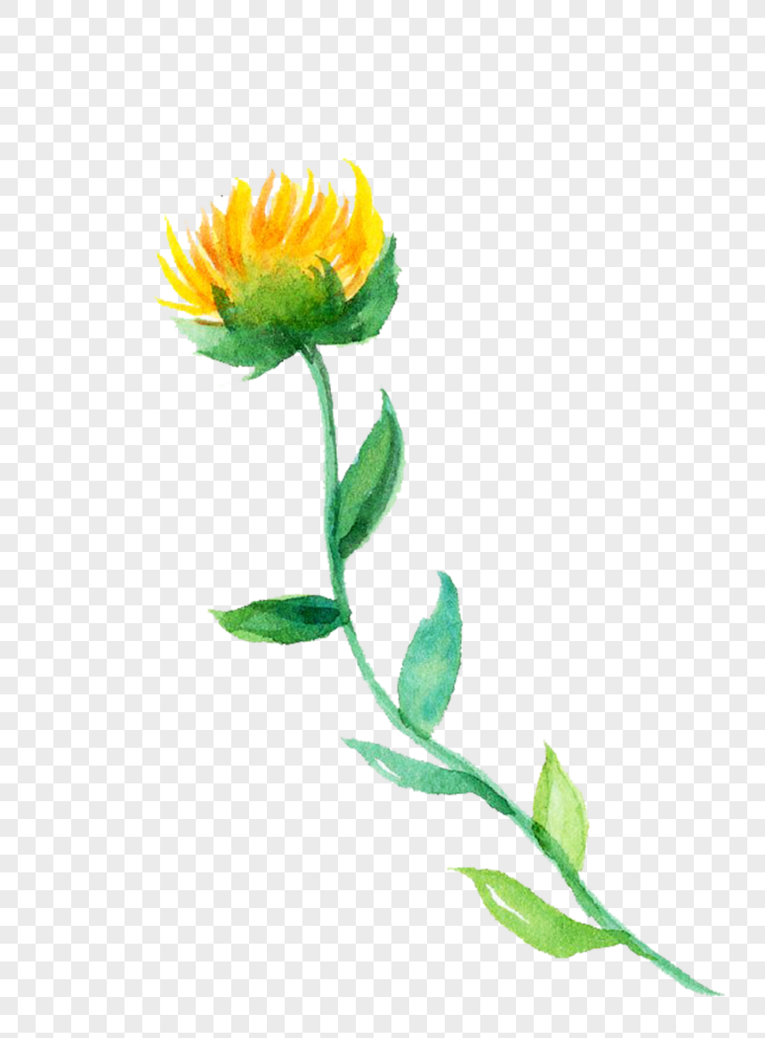 Flower Illustration Png Image Picture Free Download 400197736 Lovepik Com