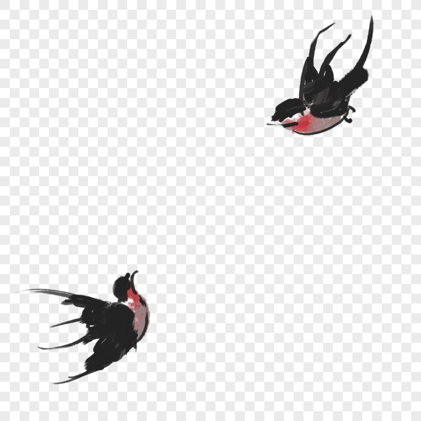 a pair of swallows png
