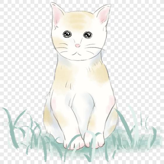 תוצאת תמונה עבור חתול מצויר
