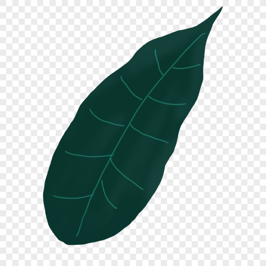 tropical plants png