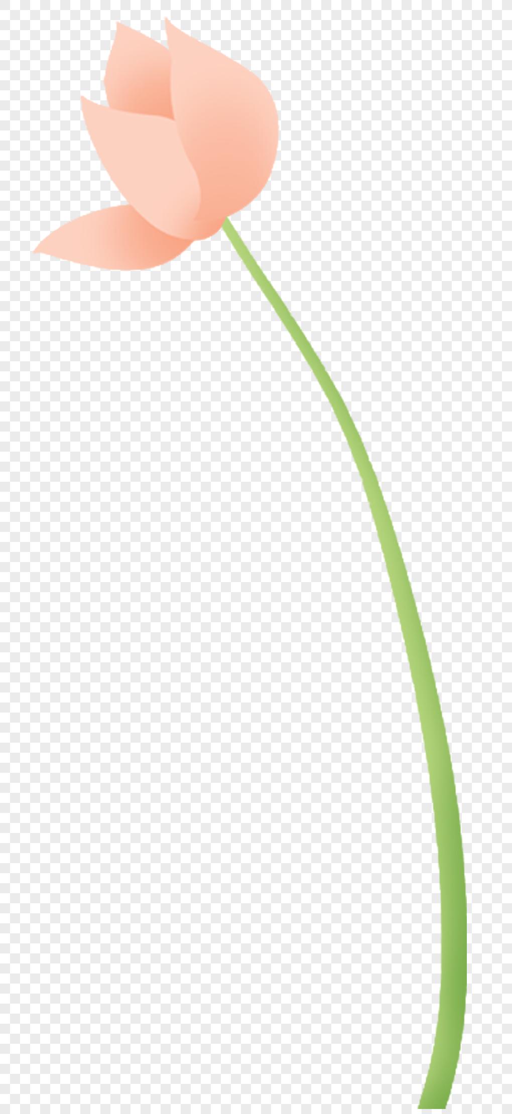 Lotus flower bud png imagepicture free download 400222662lovepik lotus flower bud izmirmasajfo