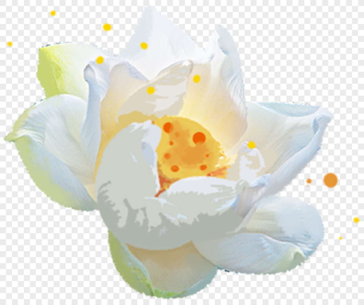 White flowers png imagepicture free download 400227401lovepik white flowers mightylinksfo