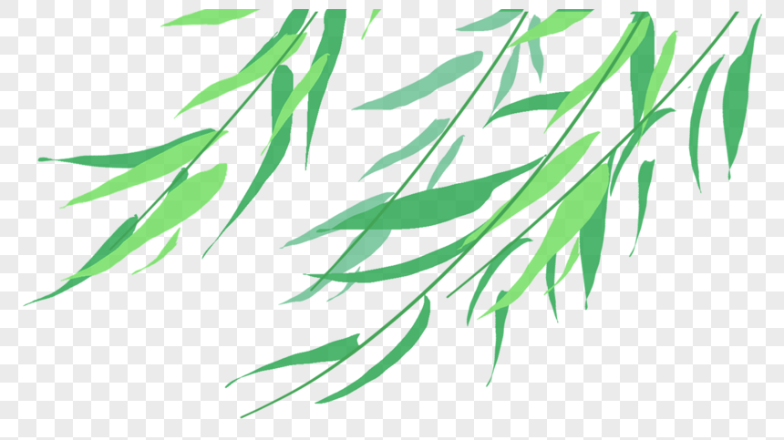 hand painted willow leaf png