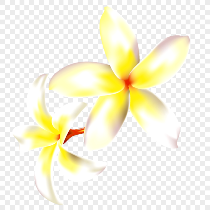 Fiori Gialli Png.Yellow Flowers Png Image Picture Free Download 400236782 Lovepik Com