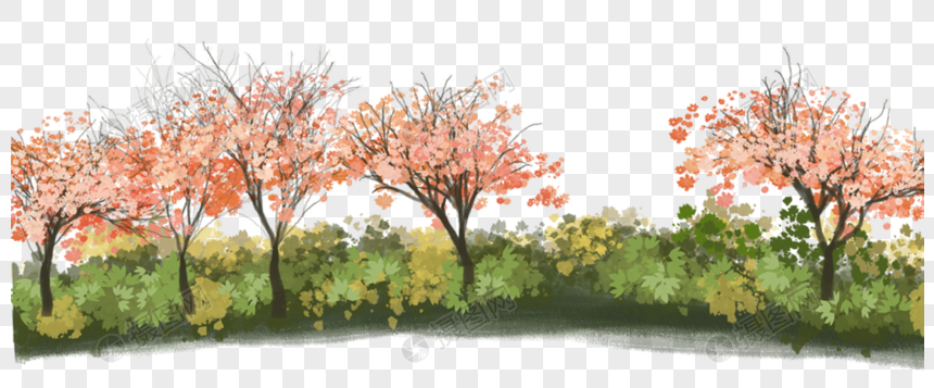 Tree bushes png image_picture free download 400242984_lovepik com
