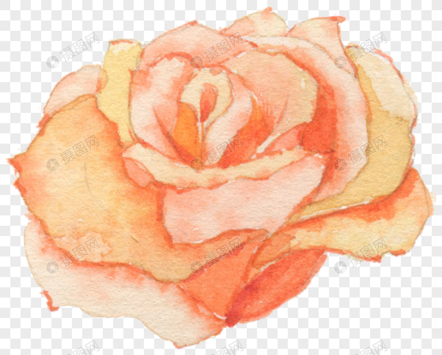 Watercolor Rose Flowers Png Image Picture Free Download