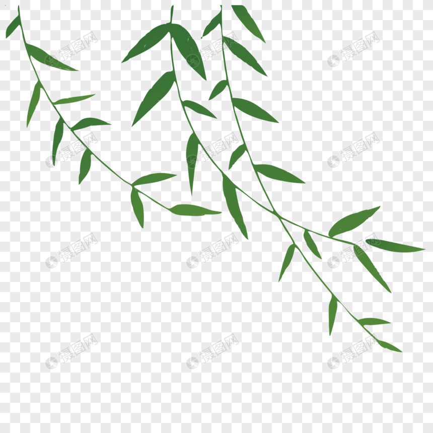 willow branch png