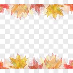 Maple Leaf Border