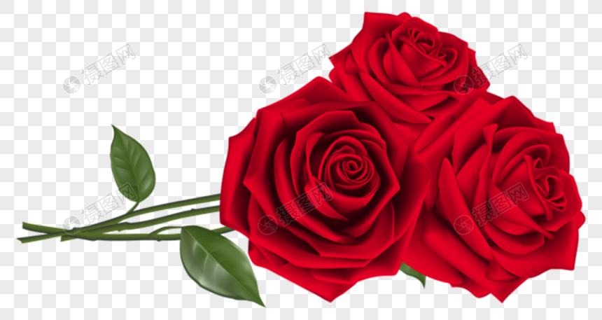 love roses png