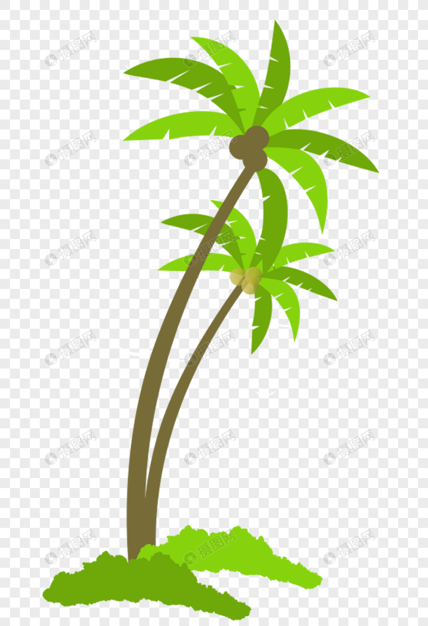 Coconut Tree Png Image Picture Free