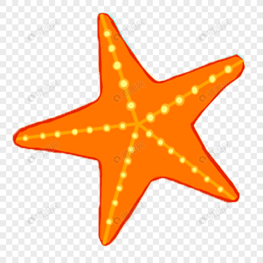 A Starfish Png Image Picture Free Download 400320304 Lovepik Com