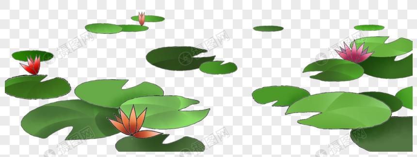 folha de lótus png