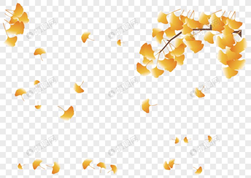 ใบไม้แห่งฤดูใบไม้ร่วง png