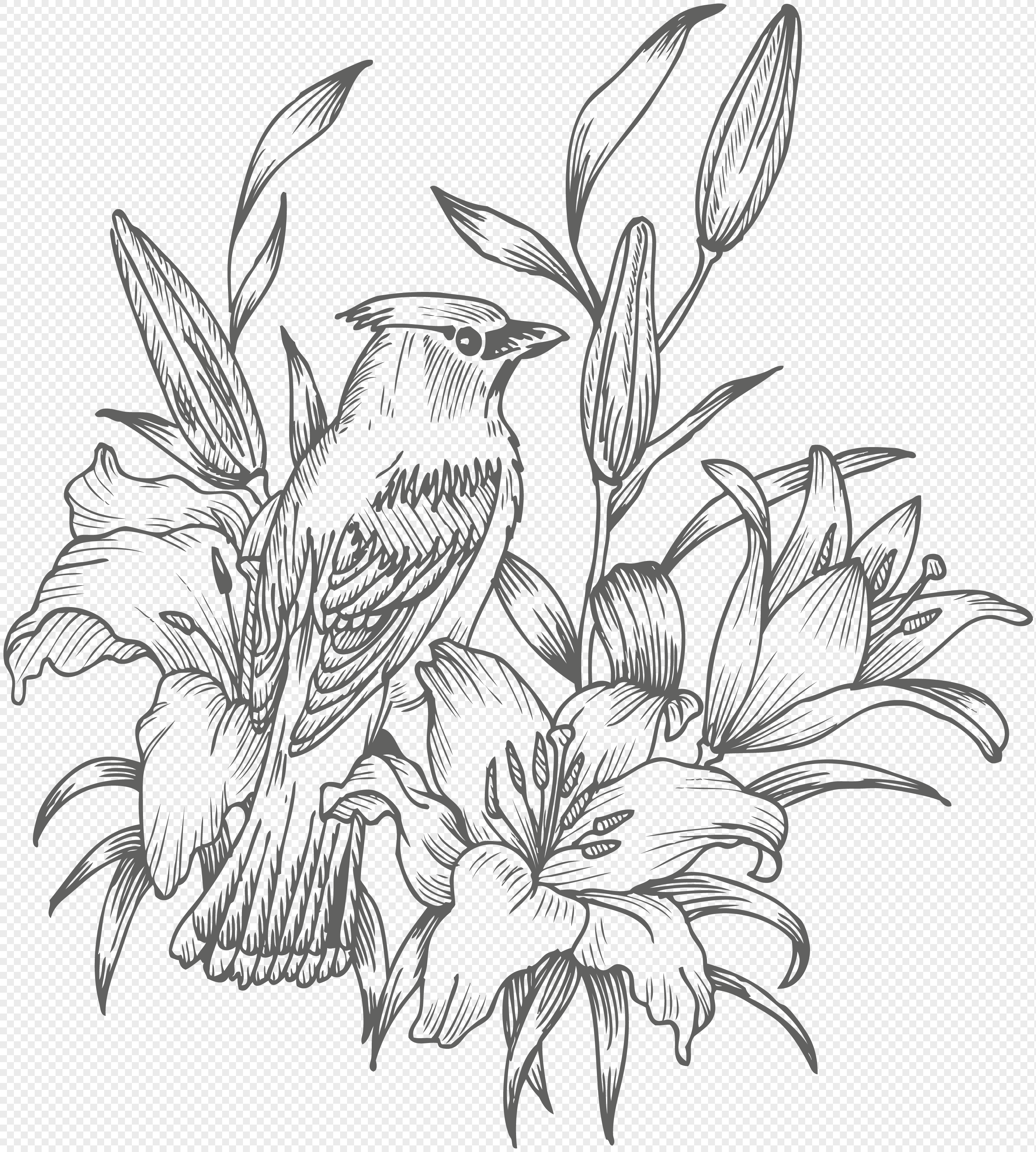 Black And White Hand Painted Flower And Bird Design Material Png