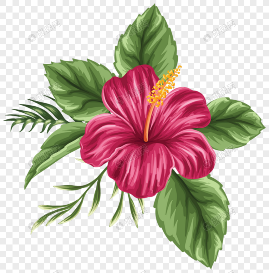 Lukisan Gambar Bunga Raya Cikimm Com
