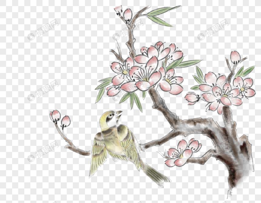 Photo De Branche Oiseau Dessin Numero De L Image400383236 Format D