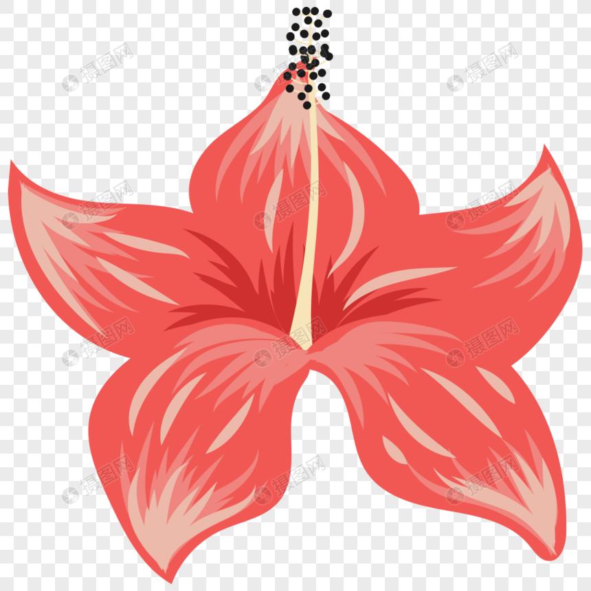 Arreglo Floral De Verano Imagen Descargarprf Gráficos