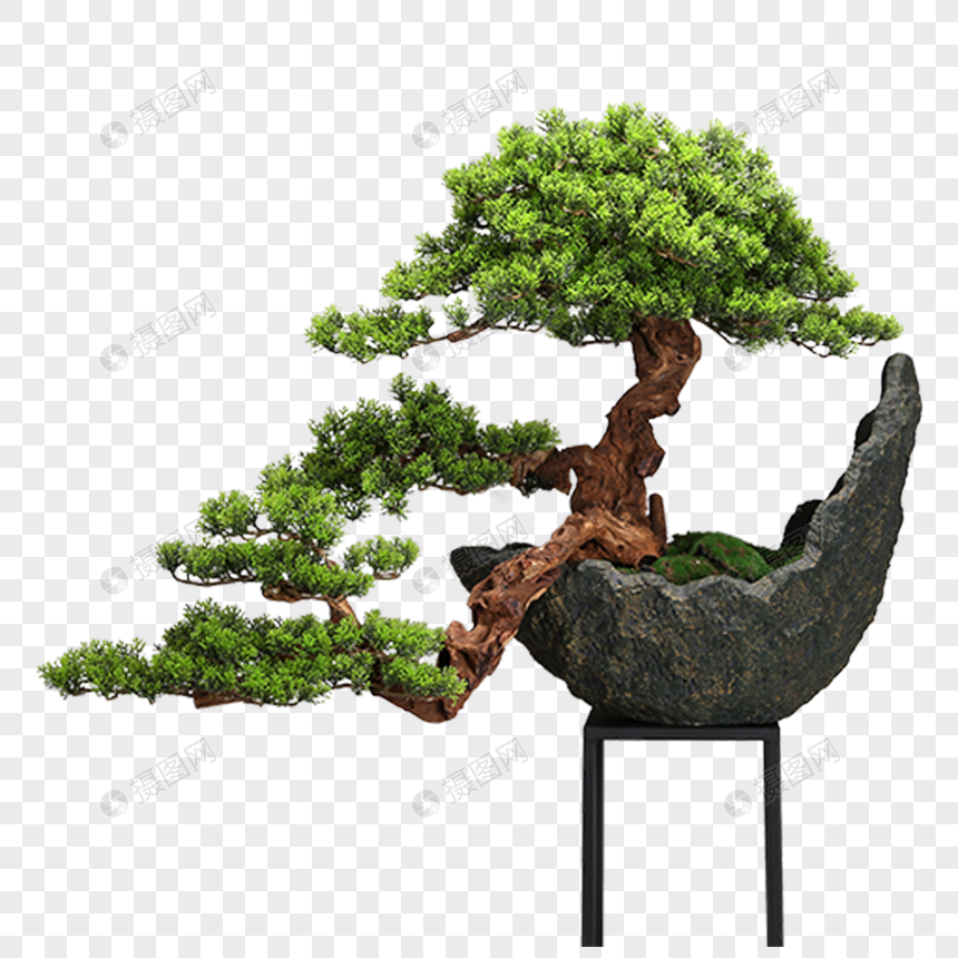 Creative Pine Bonsai Decoration Png Image Picture Free Download 400396229 Lovepik Com