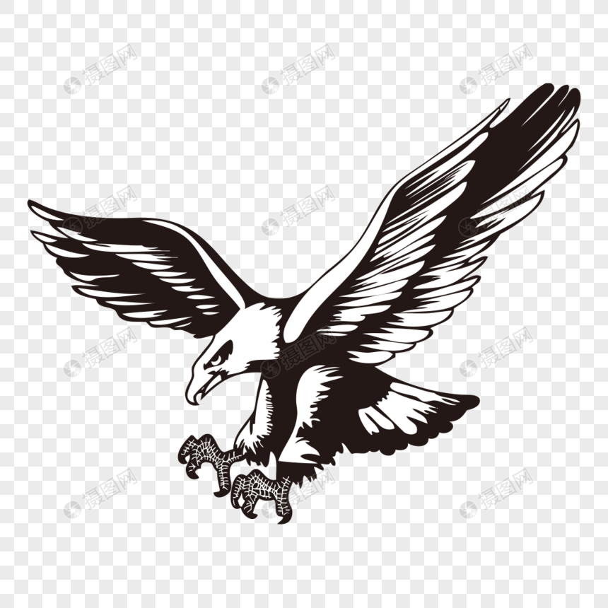 Eagle png image_picture free download 400407329_lovepik com