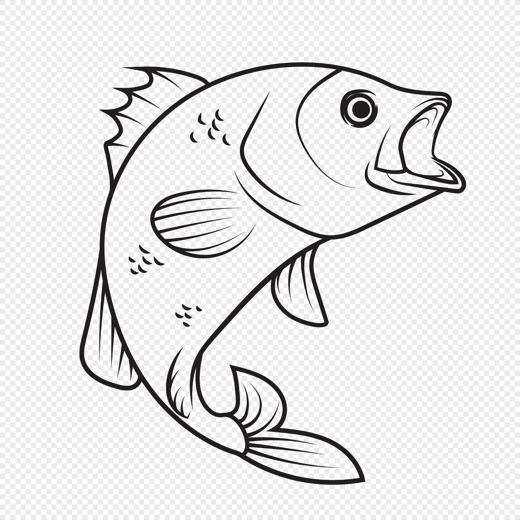 Hand drawn line drawing fish vector elements png image ...