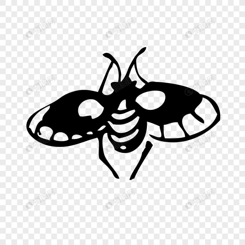 Elemen Vektor Serangga Sketsa Tangan Digambar Gambar Unduh Gratis
