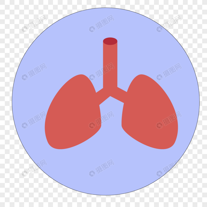 Liver And Lung Organ Icon Png Imagepicture Free Download