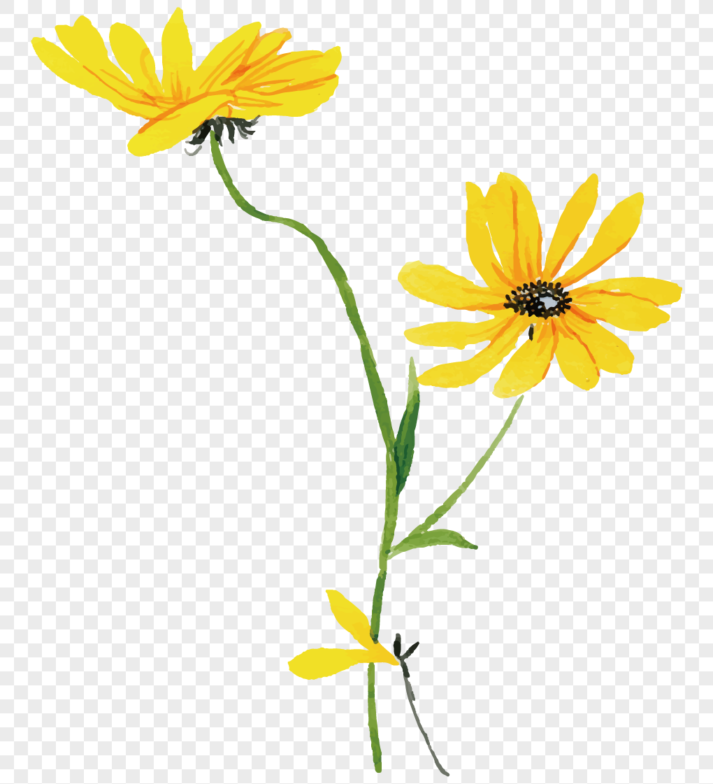 Hand painted little yellow flower png imagepicture free download hand painted little yellow flower mightylinksfo