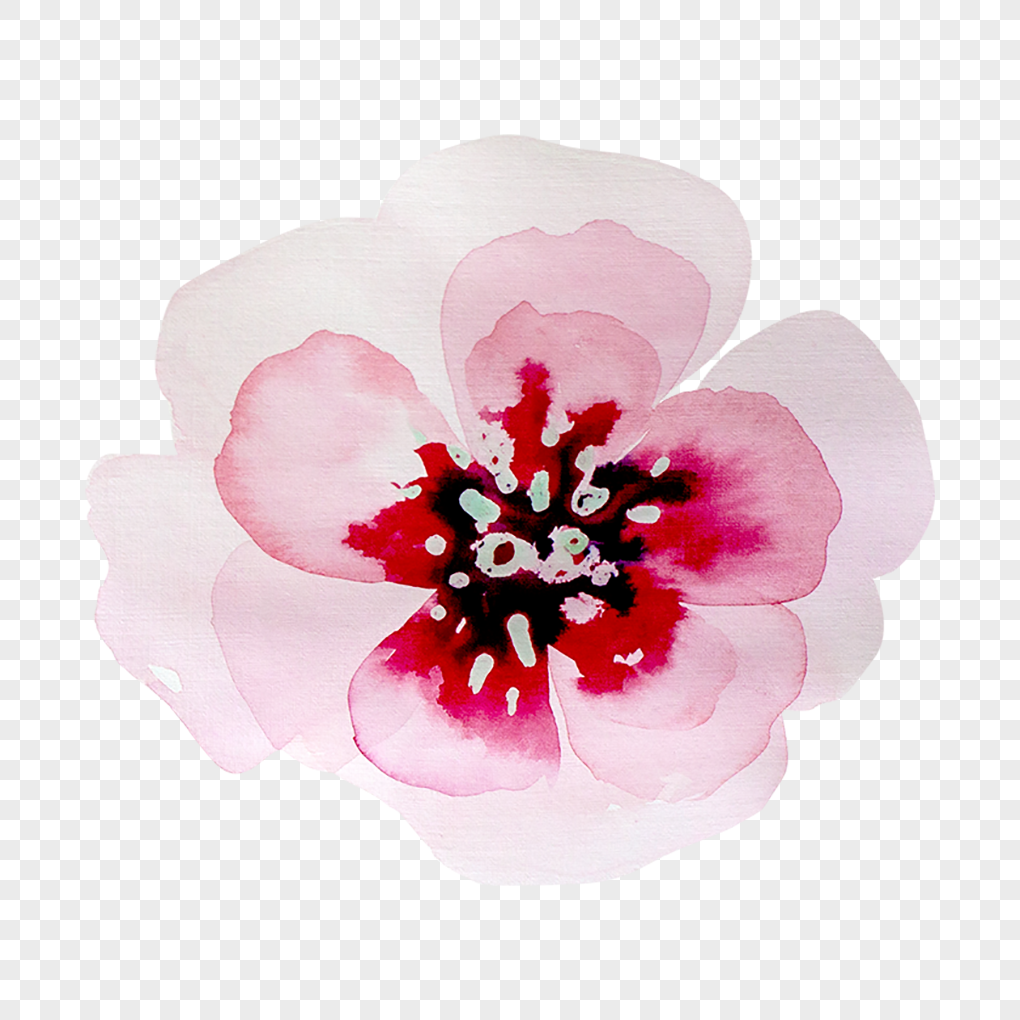 Painted pink and beautiful flowers png imagepicture free download painted pink and beautiful flowers izmirmasajfo
