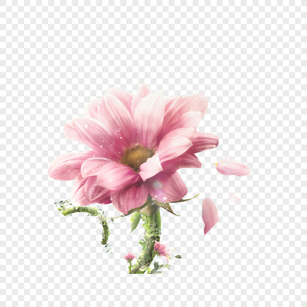 Big pink flowers png imagepicture free download 400511529lovepik big pink flowers mightylinksfo