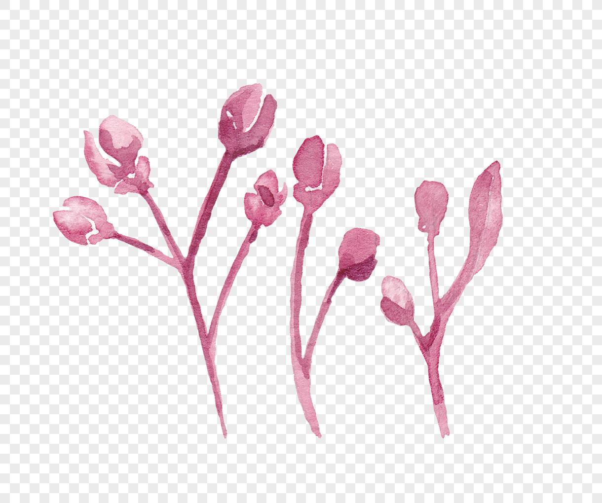Cherry blossom peach watercolor watercolor material