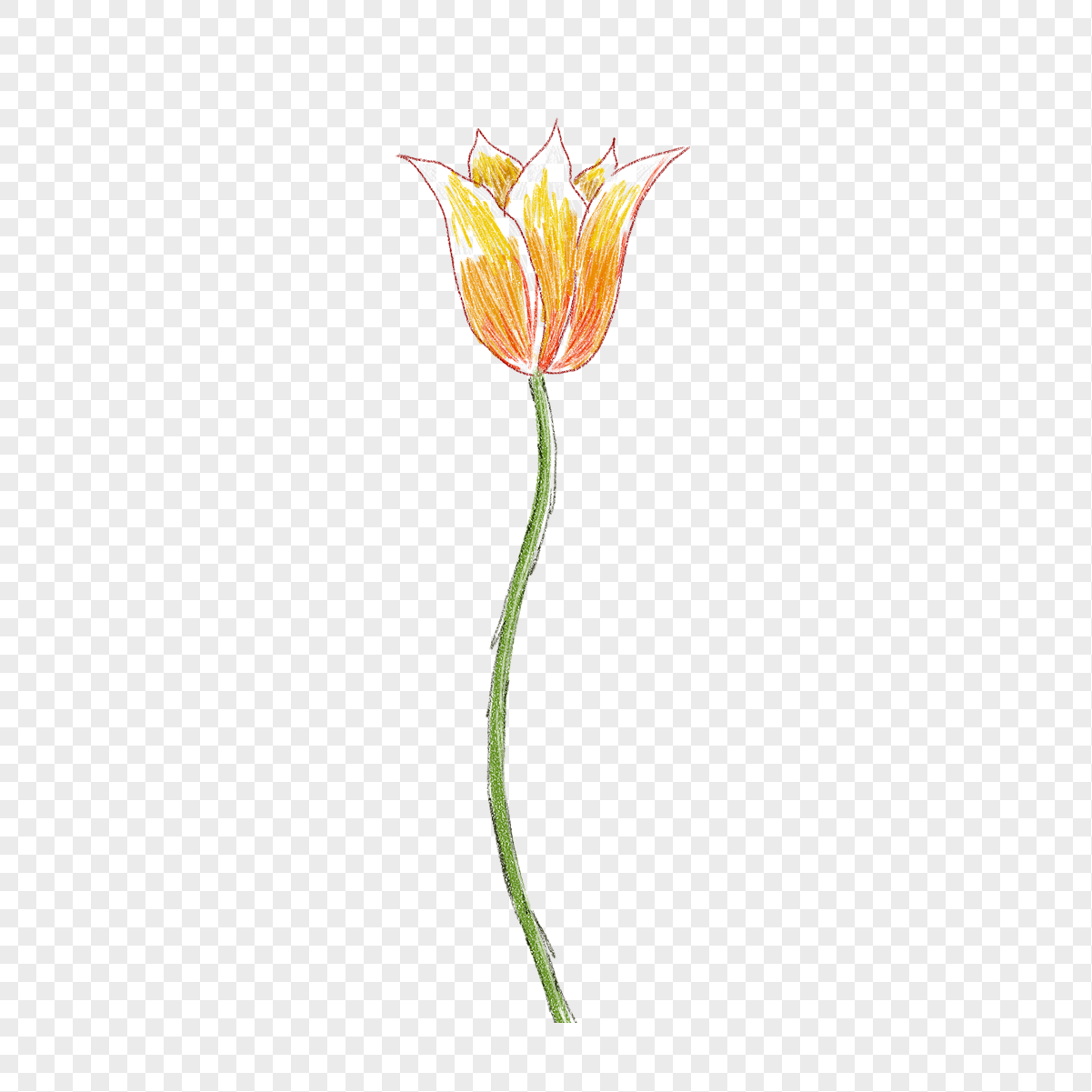 Yellow Flowers Crayon Drawing Png Imagepicture Free Download