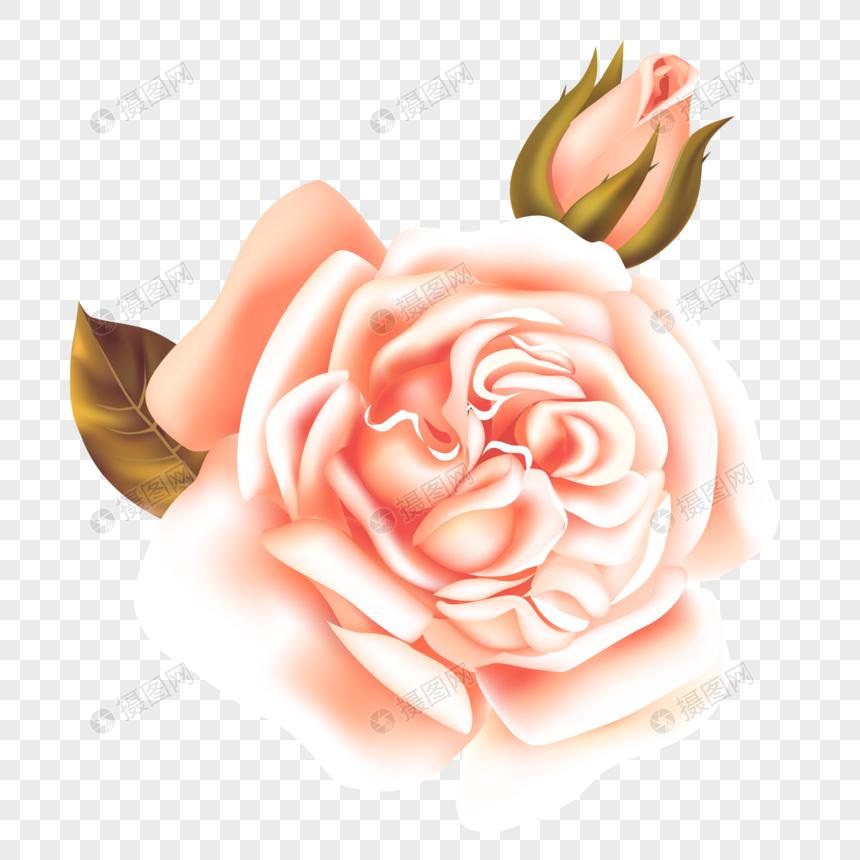 Flores Bonitas De Dibujos Animados Imagen Descargar Prf Graficos