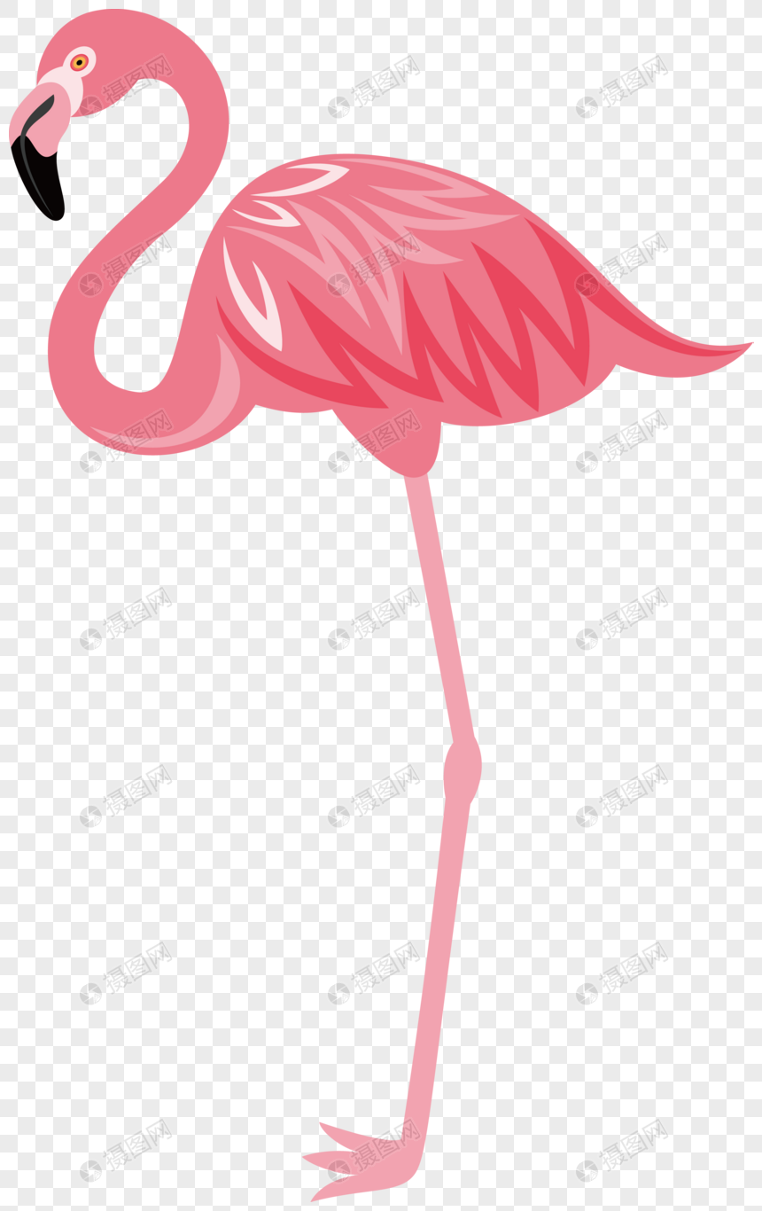 Download 65 Gambar Burung Flamingo Paling Bagus Gratis