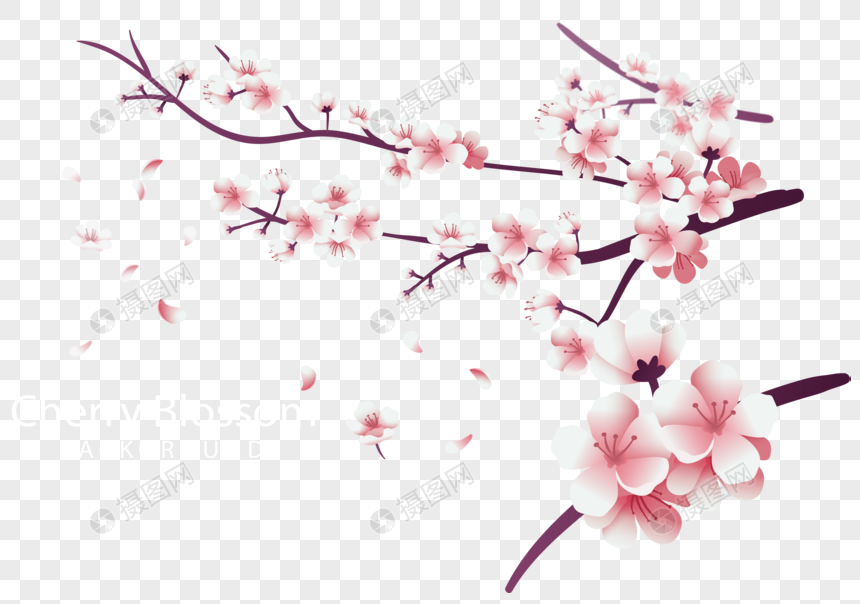 pink peach branches png