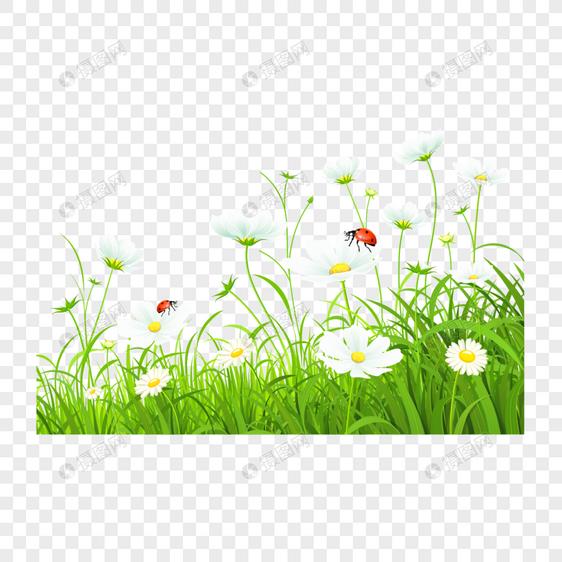 Flores Frescas De Dibujos Animados De Primavera Imagen Descargar Prf