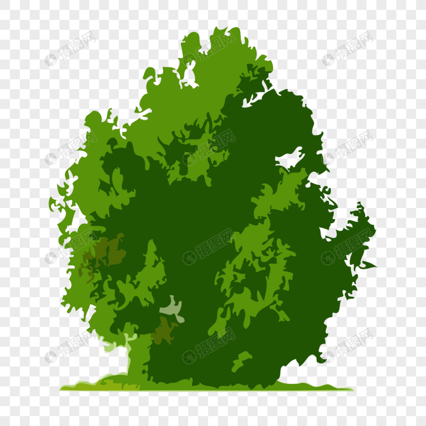 Juniper tree png image_picture free download 400713493_lovepik com