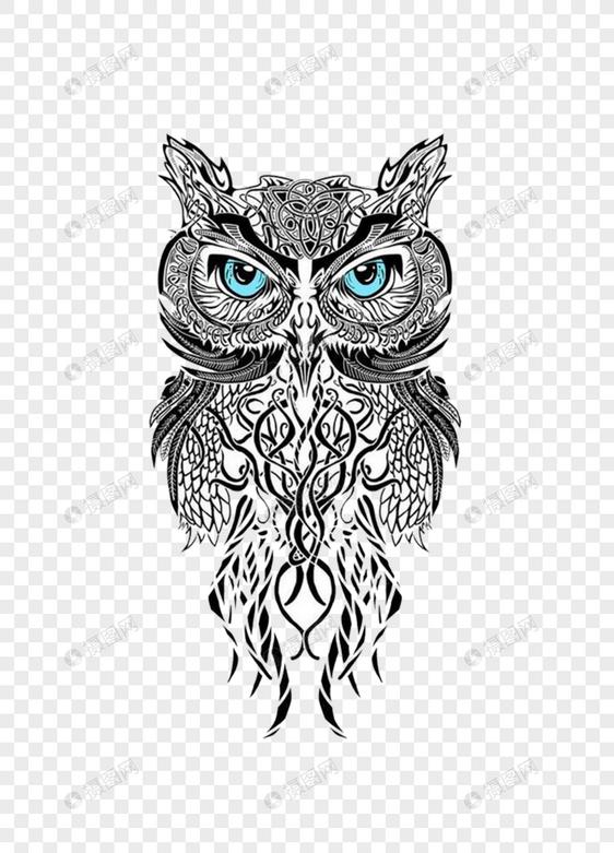 Gambar Burung Hantu Pensil Gambar Burung Hantu