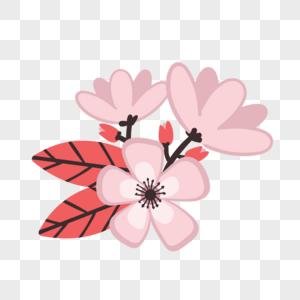 Flores Cor De Rosa Imagens218951 Flores Cor De Rosa Imagem