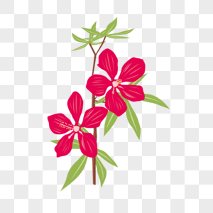Dibujos Animados Pintados A Mano Plantas Flores Imagen