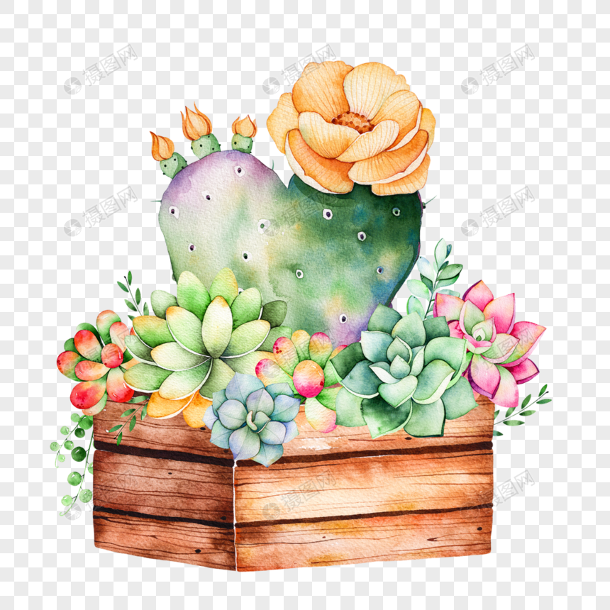 Watercolor hand painted potted cactus succulent plant png