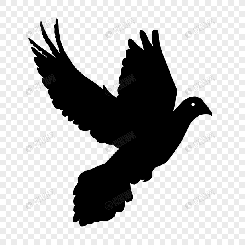 Dove silhouette png image_picture free download
