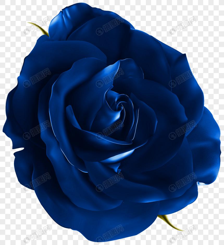 Blue Rose Png Image Picture Free Download 400851685 Lovepik Com