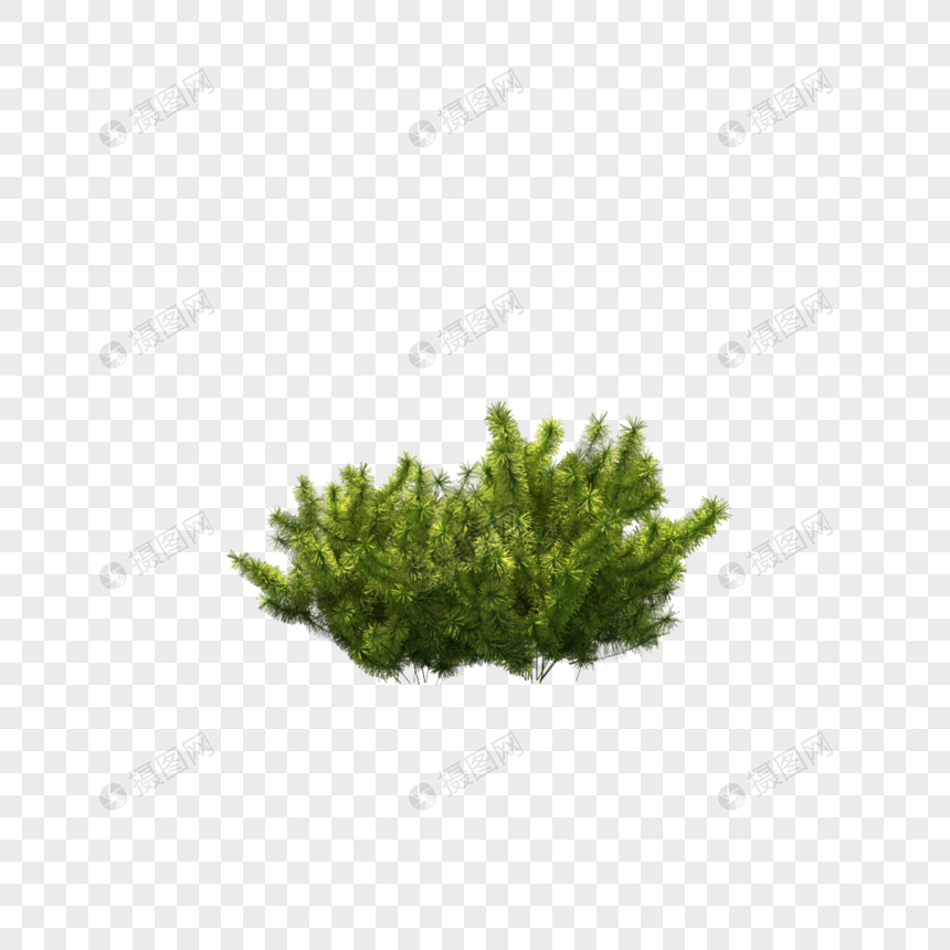 Bushes png image_picture free download 400889526_lovepik com