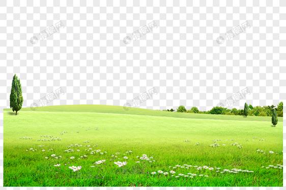Unduh 96+ Background Rumput Terbaik